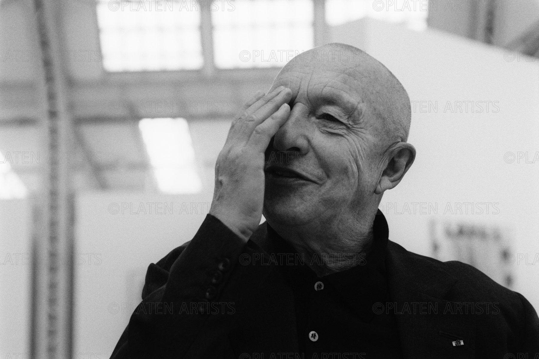 Georg Baselitz, Halbsicht, Hamburg, 2008