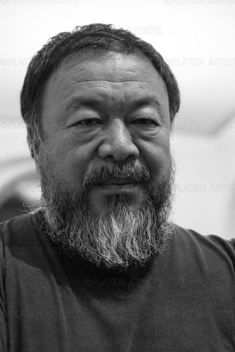 Ai Weiwei, Konfrontation, Berlin, 2015